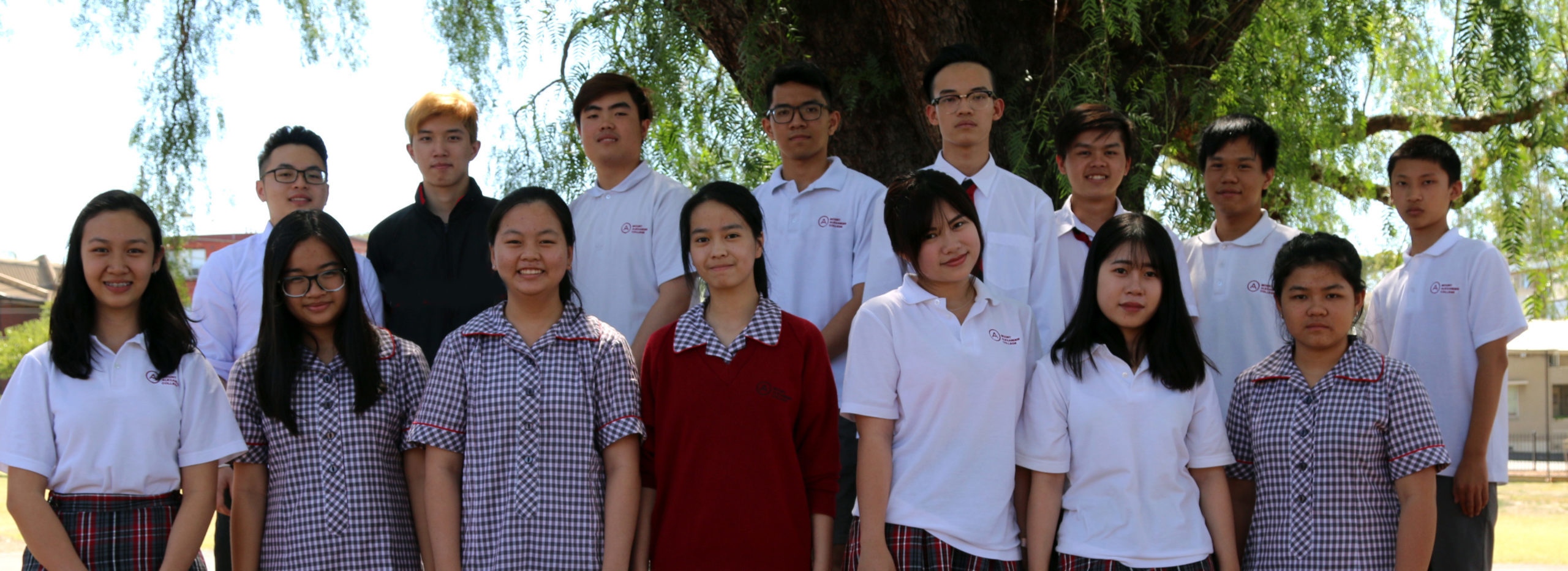 We have a rich program for international students